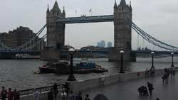 View of Tower Bridge with a Bermondsey Escort
