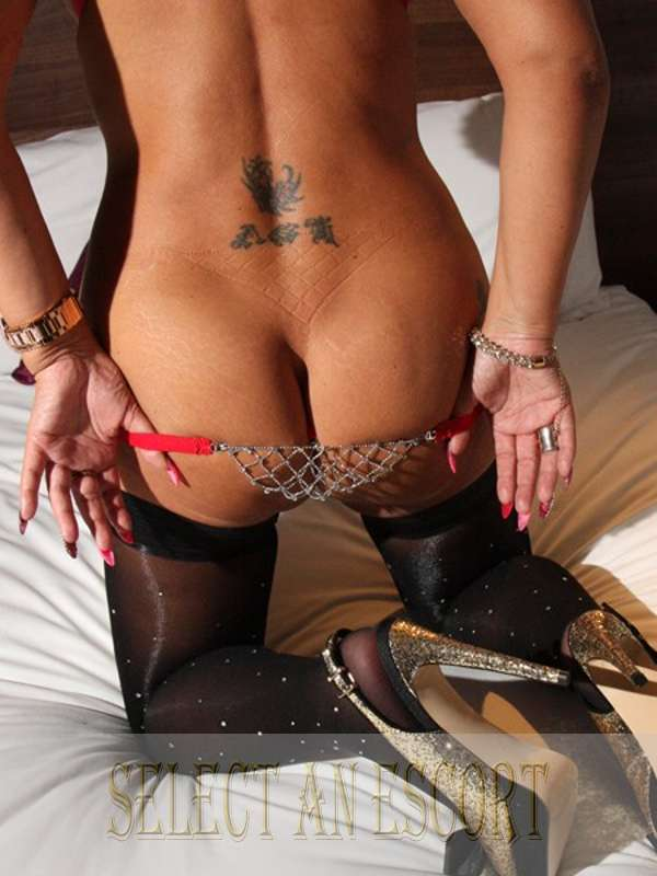 cums independent amsterdam escorts